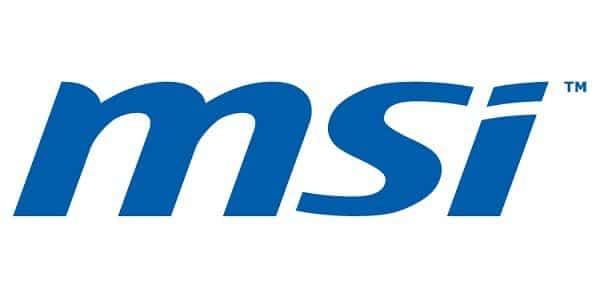 229MSI_logo1