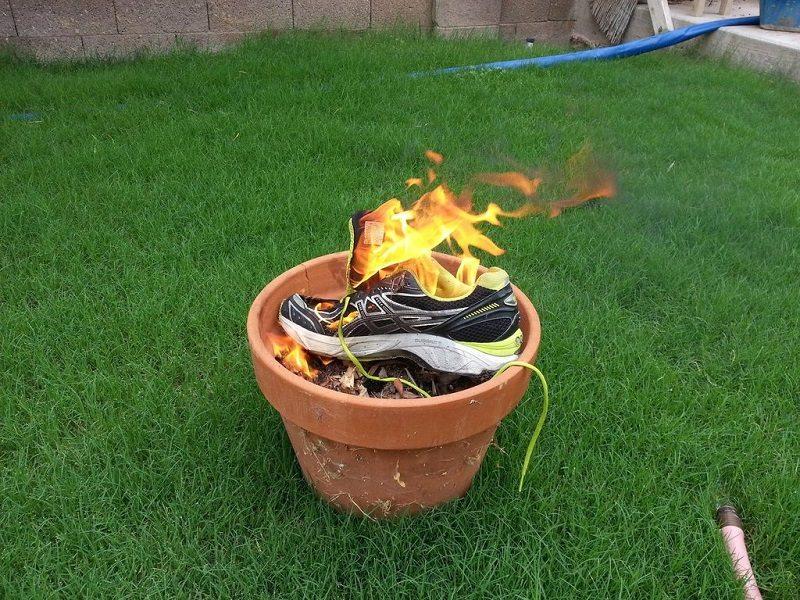 black_widow_egg_shoe_3