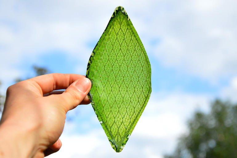 silk-leaf-by-julian-melchiorridezeen01644