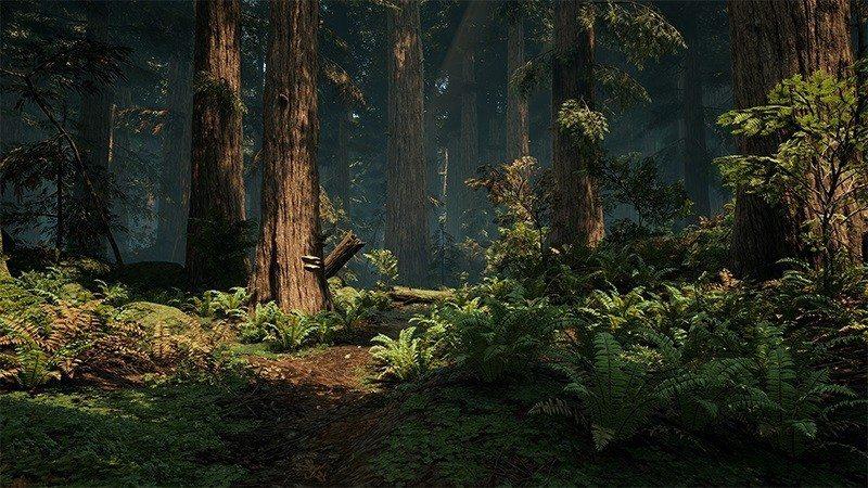 redwood unreal engine 4 forest (2)1
