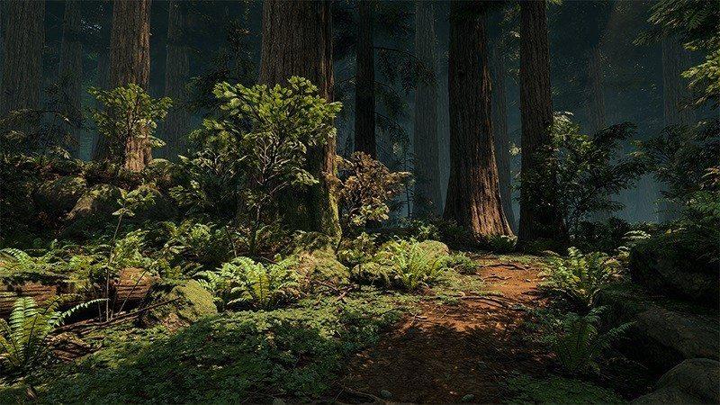 redwood unreal engine 4 forest (3)1