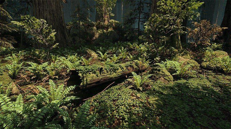 redwood unreal engine 4 forest (5)1
