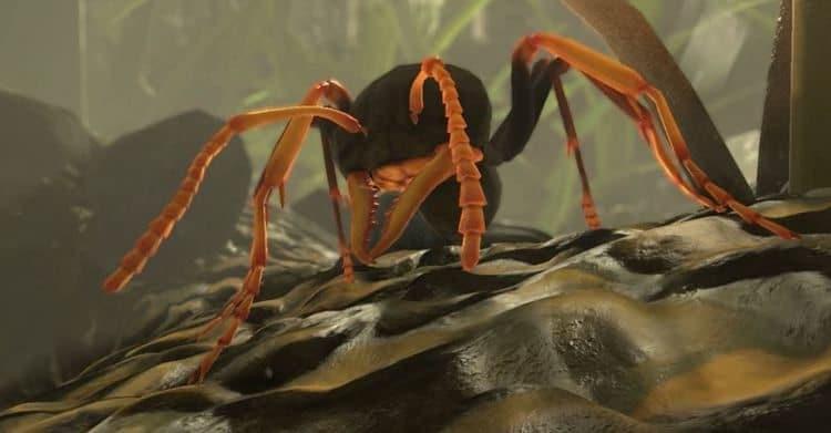 ant-Simulator
