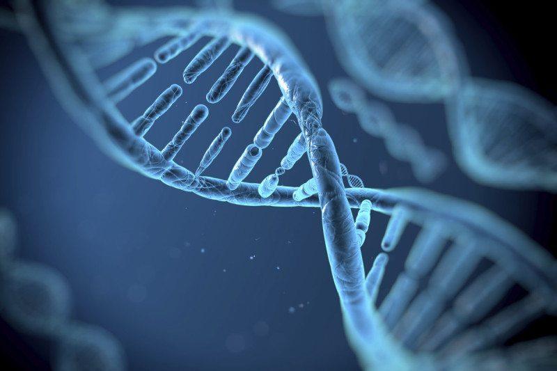 gene editing 1