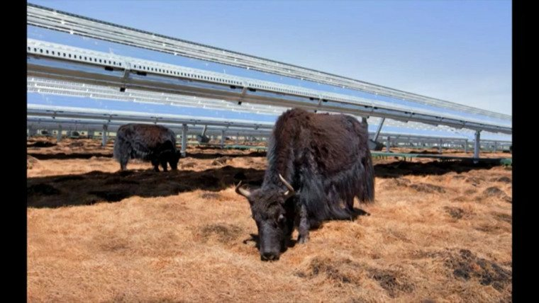 93% Of Apple Facilities Run On Renewable Energy