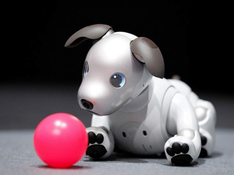 You Can Own Sony's New Aibo Robot Dog Soon for $2,900 USD